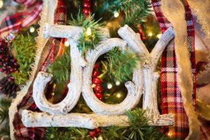 joy - holiday