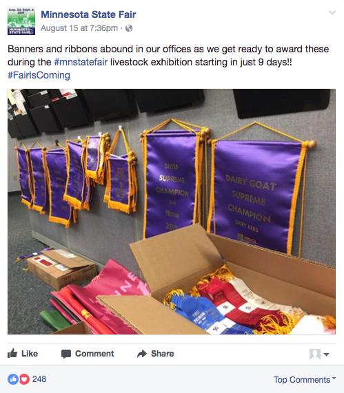 great state fair ribbons